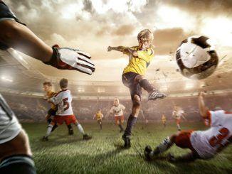 На какой вид спорта ставить ставки?